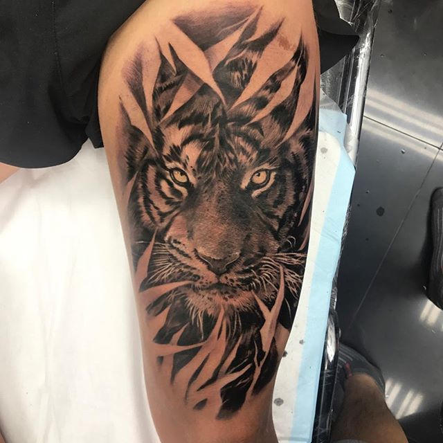 Tattooed Animals: Celebrity Ink Tattoo Phuket